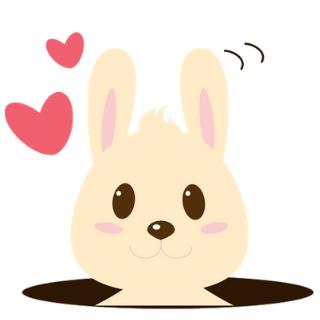 The Travel Bunny